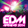 EDM Anthems 2014