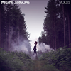 Roots - Imagine Dragons (Single)